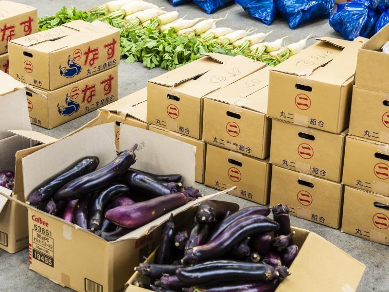 全国各地から多種多様な青果物を調達